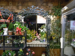 Florist darby pa Flower cart Fruit bloom